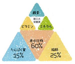 ビタミン・ミネラル・酵素 新三大栄養素